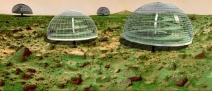 Giant green-houses