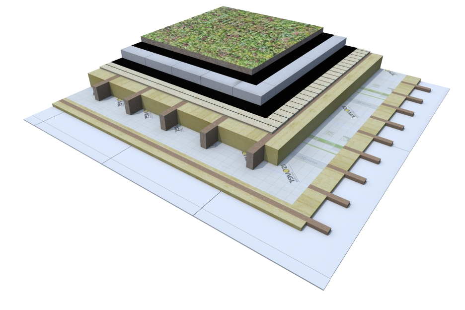 Certified 3D Passive house detail: Green roof with wood_12cm EPS - flat roof