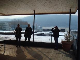 Тераса с поглед към Алпите и озеленен покрив на второ ниво