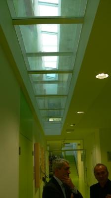 Горно осветление в коридорите на училището, през няколко нива, посредством остъклен под. Внимание върху избора на цветово решение за интериора