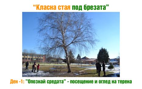 Изследване на връзка със зелените площи и училищния двор